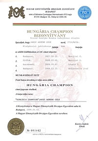 Hungária Champion